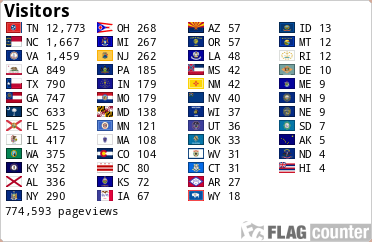 Counter showing state flags and how many visits have been made to the site by people in those states